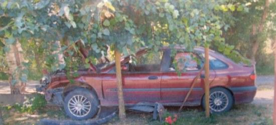 Budy Łańcuckie: Pijany kierowca wjechał w ogrodzenie